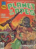 Planet of the Apes (1974 Marvel) Magazine 21