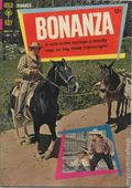 Bonanza (1962) 24