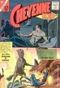 Cheyenne Kid (1958 Charlton) 40