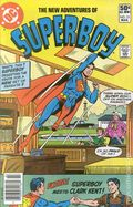 New Adventures of Superboy (1980 DC) 15