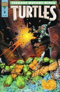 Teenage Mutant Ninja Turtles (1993 Mirage) 9
