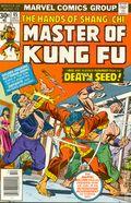 Master of Kung Fu (1974) 45