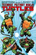 Teenage Mutant Ninja Turtles (1984) 25