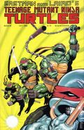 Teenage Mutant Ninja Turtles (1984) 26