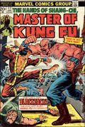 Master of Kung Fu (1974) 17
