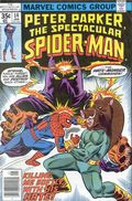 Spectacular Spider-Man (1976 1st Series) 14