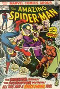 Amazing Spider-Man (1963 1st Series) 118