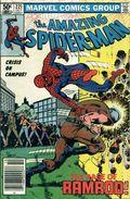 Amazing Spider-Man (1963 1st Series) 221