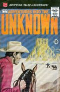 Adventures into the Unknown (1948 ACG) 113