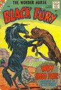 Black Fury (1956 Charlton) 18