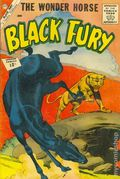 Black Fury (1956 Charlton) 36