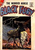 Black Fury (1956 Charlton) 14