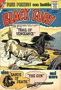 Black Fury (1956 Charlton) 22