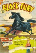 Black Fury (1956 Charlton) 32
