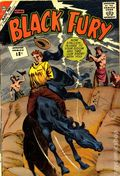 Black Fury (1956 Charlton) 38