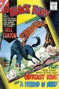 Black Fury (1956 Charlton) 57