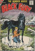 Black Fury (1956 Charlton) 16