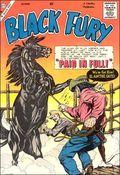 Black Fury (1956 Charlton) 21