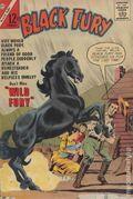 Black Fury (1956 Charlton) 40