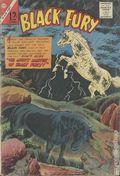 Black Fury (1956 Charlton) 56