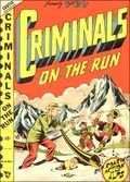Criminals on the Run (1948) 3