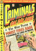 Criminals on the Run (1948) 10