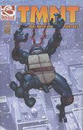 Teenage Mutant Ninja Turtles (2001 Mirage) 2REP