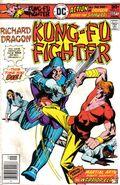 Richard Dragon Kung Fu Fighter (1975) 11