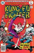Richard Dragon Kung Fu Fighter (1975) 13
