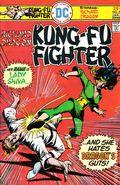 Richard Dragon Kung Fu Fighter (1975) 5