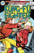 Richard Dragon Kung Fu Fighter (1975) 12