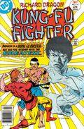 Richard Dragon Kung Fu Fighter (1975) 14