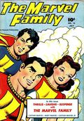 Marvel Family (1945) 13