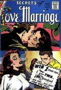 Secrets of Love and Marriage (1956) 17