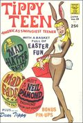 Tippy Teen (1965) 19