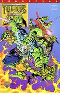 Teenage Mutant Ninja Turtles Savage Dragon (1995) 1