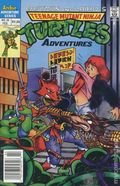 Teenage Mutant Ninja Turtles Adventures (1989) 29
