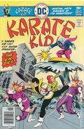 Karate Kid (1976) 2
