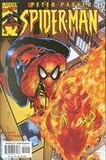 Peter Parker Spider-Man (1999) 21