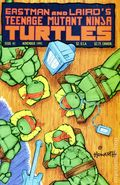 Teenage Mutant Ninja Turtles (1984) 41