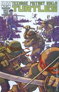Teenage Mutant Ninja Turtles (2011 IDW) 14RI