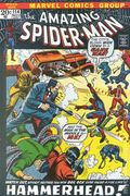 Amazing Spider-Man (1963 1st Series) Mark Jewelers 114MJ