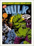 Hulk Comic (1979-1980 Marvel UK) Hulk Weekly 19