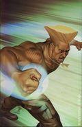 Street Fighter (2003 Image) 4C