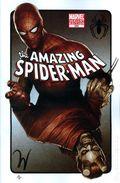 Amazing Spider-Man (1998 2nd Series) 595B