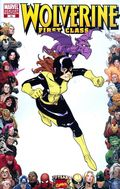 Wolverine First Class (2008) 18B