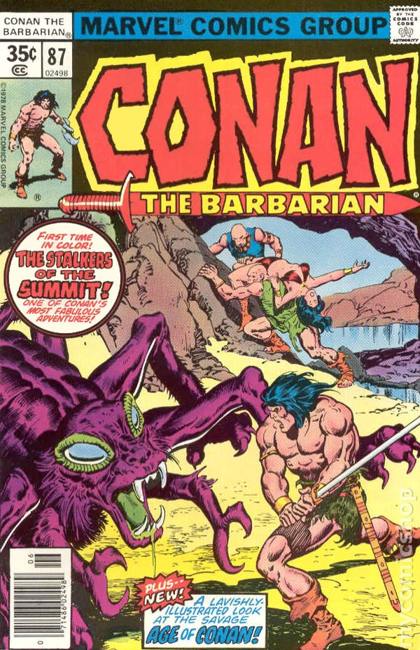 conan your barbarian essay