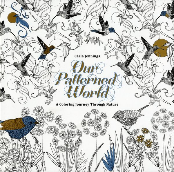 Our Patterned World SC 2016 IDW A Coloring Journey Through Nature 1 1ST