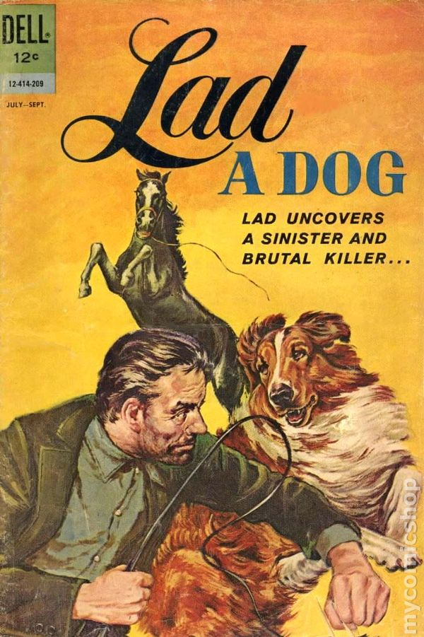 lad, a dog