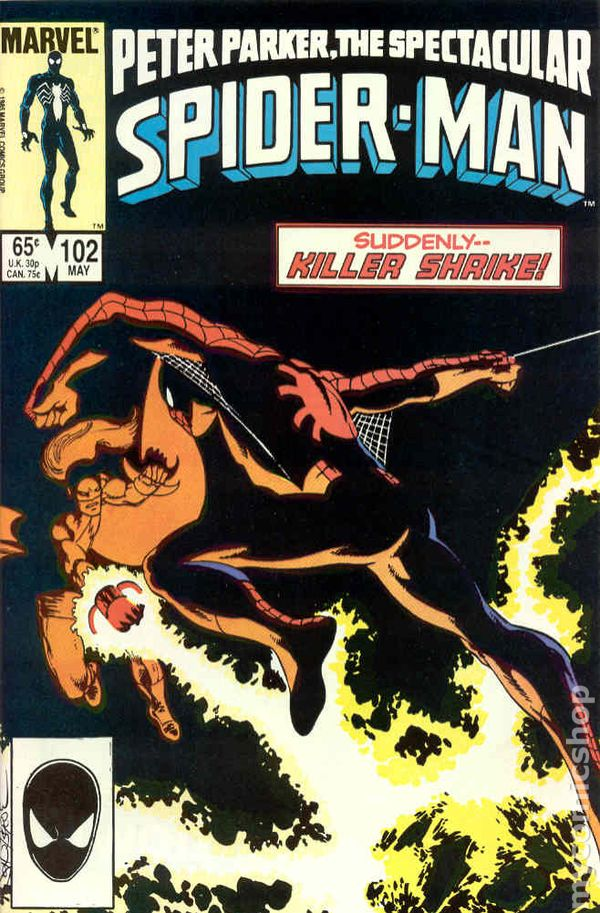 Spectacular Spider-Man (1976 1st Series) comic books